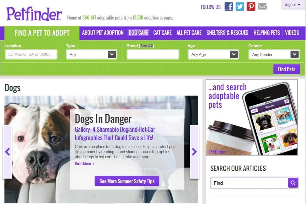 adopt a pet com official site pets world